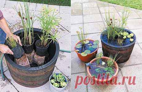 Usroystvo mini-prudikov in pots - original idea for decoration of the homestead territory