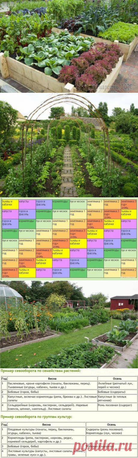 La rotación de cultivos sobre la huerta de campo: inteligente cultiva la cosecha, y sabio la tierra