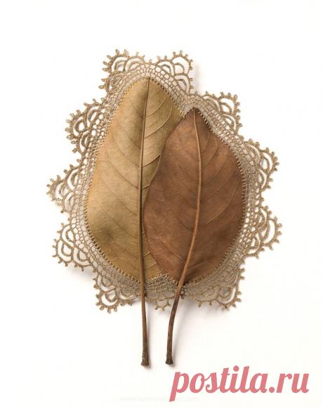 Опавшие листья - новое полотно для творчества. Смотрите и удивляйтесь! | Плюшкин-Вилль | Яндекс Дзен