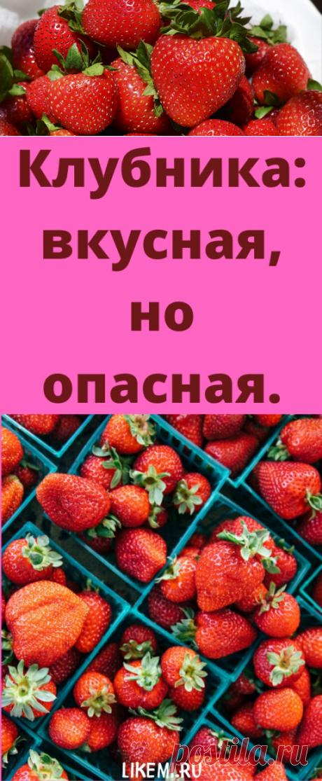Клубника: вкусная, но опасная. - likemi.ru