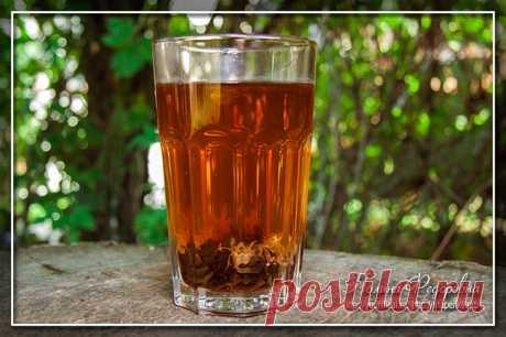 Иван-чай | Домашние рецепты
