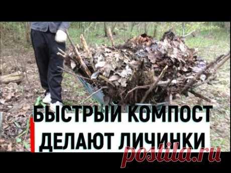 Быстрое приготовление компоста за сезон без затрат и труда - YouTube