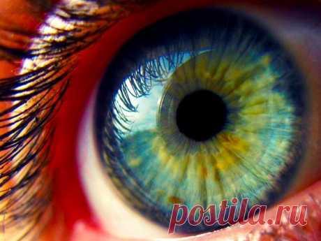 Что стоит знать о глазах — Полезные советы