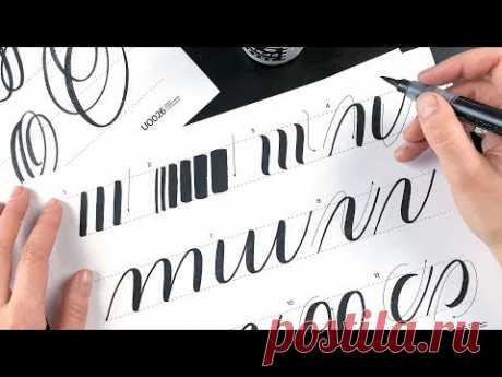 Первый урок по каллиграфии кистью и брашпеном. Разминка.