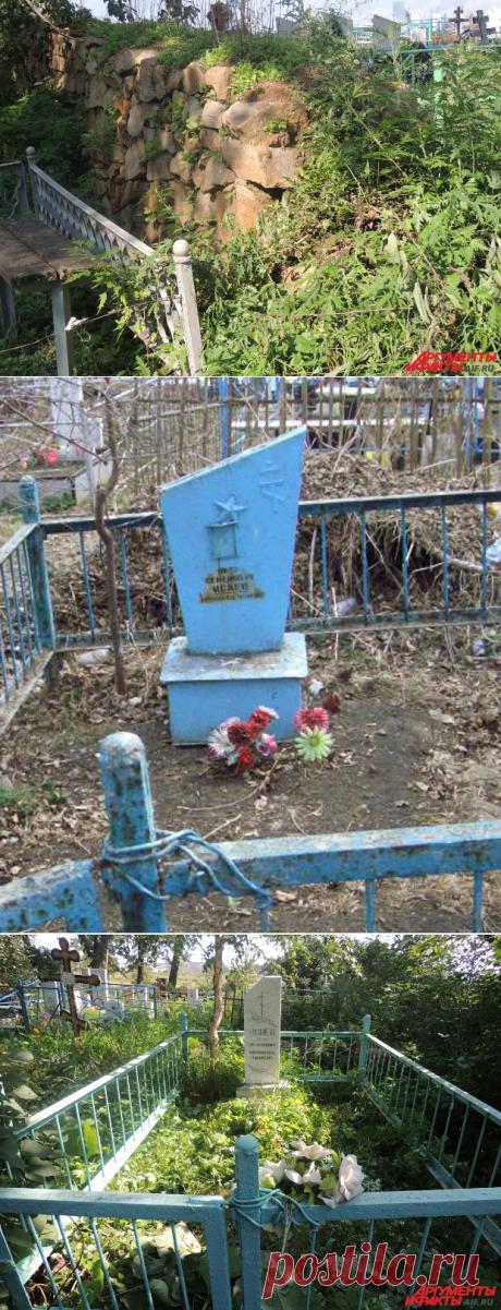 Петька, друг Чапаева: земляки ординарца рассказали о его настоящей судьбе | Люди | Общество | Аргументы и Факты