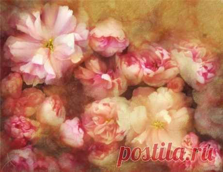 Цветочная нежность на полотнах Alberto Guillen