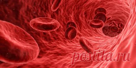 Чем опасно низкое содержание сахара крови? | Здоровье и Долголетие | Яндекс Дзен