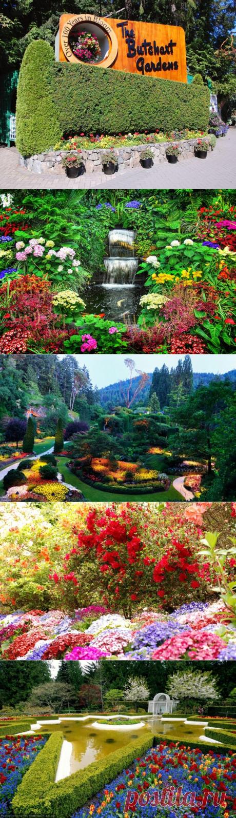 Сады Бутчартов: цветочная радуга посреди канадских снегов / Туристический спутник