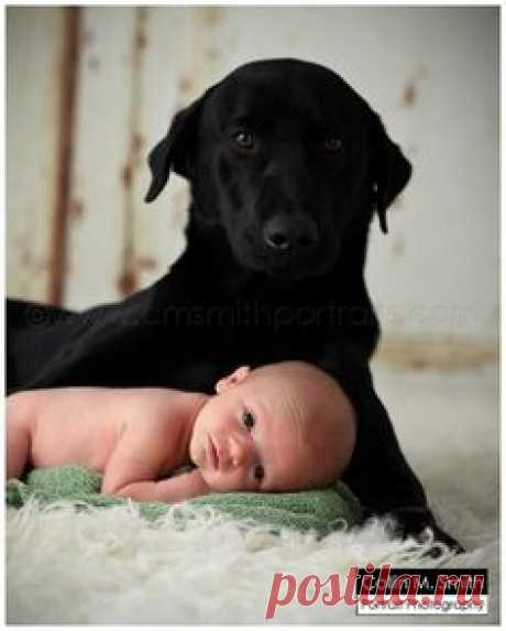 newborn with dog Florence, SC Newborn Photographer: Baby Rivers!! » Collin M. Smith Portrait Photography