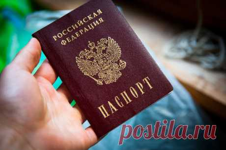 As swindlers get copies of your passports | the Anti-swindler | Yandex the Zen