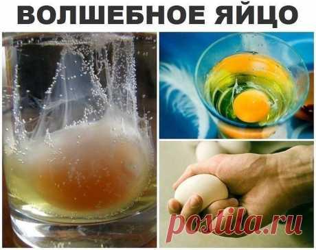 СНЯТИЕ НЕГАТИВА С ЧЕЛОВЕКА и лечение несложных болезней сырым яйцом.   Перед сном:  В стакан, наполовину наполненный водой, вбить сырое яйцо (не размешивать). Над стаканом произнести: «все худое, все плохое пусть вытекает в этот стакан», поставить у изголовья на ночь. Утром смотрим на яйцо в стакане. Желток — это жизнь человека, а белок — это среда, окружающая его: могут быть пузырьки, нити, которые тянутся вверх, туман, колпак, либо вообще яйцо «взбито до пены.» Завист...