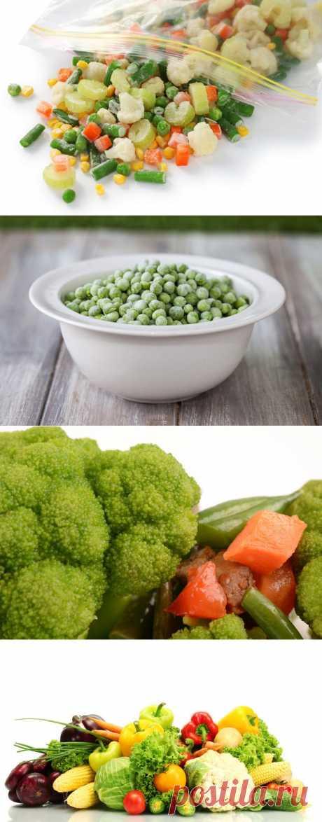 (+1) тема - Секреты заморозки сезонных ягод, фруктов и овощей | Среда обитания