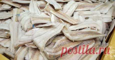 Если хотите жить долго, — такую рыбу лучше не есть — ГАРМОНИЯ В СЕБЕ