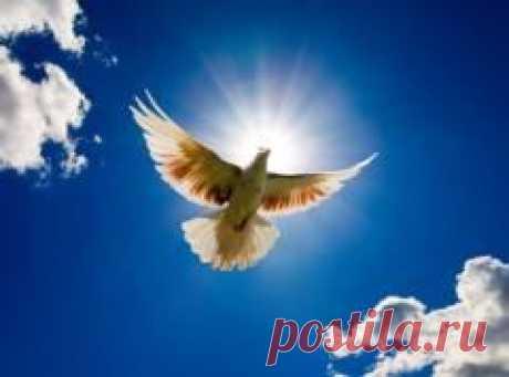 Сегодня 20 июня памятная дата День Святого Духа