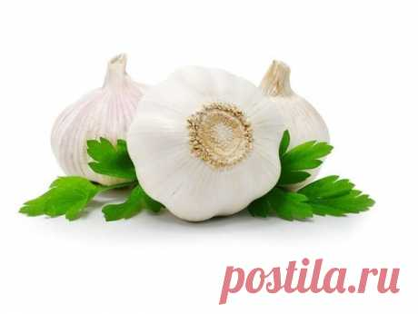 Garlick oil - wonderful means!