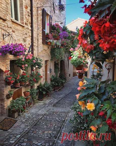 ༺🌸༻Уютная итальянская улочка...