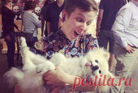 Уморительный путеводитель по собачьим породам Уморительный путеводитель по собачьим породам Комикс, который поможет вам определить породу собаки   Существует так много пород собак, что невероятно легко ошибиться, перепутав одну с другой. Однако, …