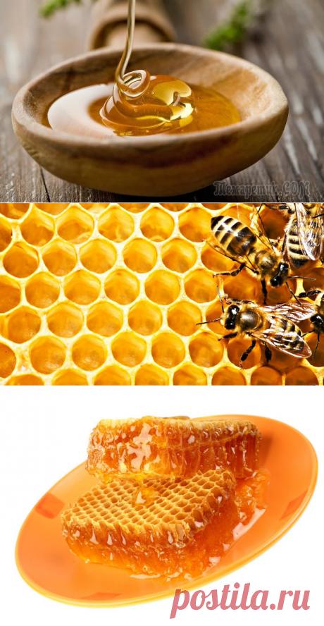 Интересные факты о мёде