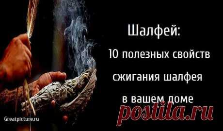 Шалфей: 10 полезных свойств сжигания шалфея в вашем доме Шалфей: 10 полезных свойств сжигания шалфея в вашем доме.Когда вы думаете о шалфей, вы, вероятно, думаете о типичной приправе для индейки или