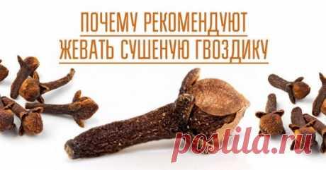 Чем хороша привычка жевать сушеную гвоздику