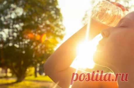 Как перенести жару легче | ЛЮБОВЬ ПРУСИК | Яндекс Дзен