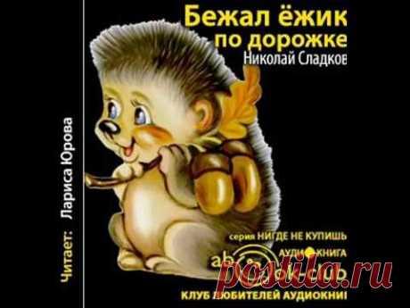 Сладков Николай - Бежал ежик по дорожке (2016) Аудиокнига Детская