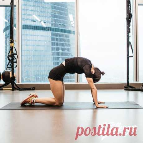 Упражнения на плечи, упражнения для спины, упражнения для мышц спины