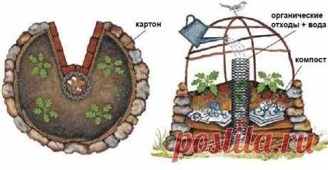 Как сделать высокие грядки: полезные идеи для отличного урожая