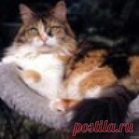 Татьяна **********