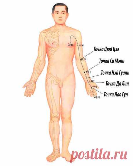 Простукивание канала перикарда восстановит здоровье и продлит жизнь