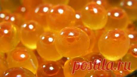 Икру нельзя есть при анемией потому, что красная икра приготовлена при помощи формальдегида. Чудес не бывает и икринки не хранятся. Берут 236-ю добавку, которая называется походное горючее или уротропин, икру заливают, добавляют лимонную кислоту и в кислой среде уротропин переходит в формальдегид. Формальдегид - это вещество, которым бальзамируют трупы, и икра хранится полгода, год. Икру при анемии нужно есть свежемороженую. Достать, разморозить, пол-чайной ложки засолить ...