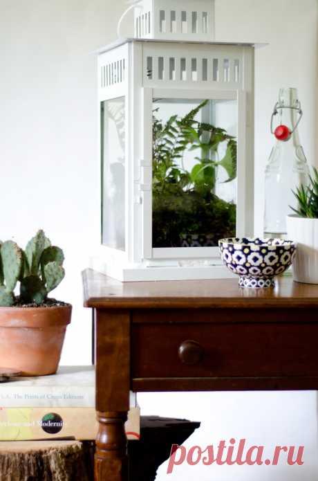 Фонарный флорариум (Diy) Модная одежда и дизайн интерьера своими руками