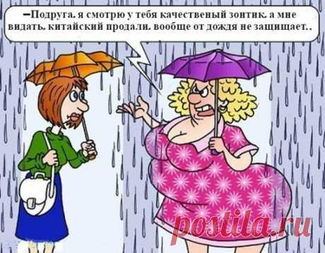 Анекдоты в картинках: Эпизод №46 | solegol.com💰💰💰 | Яндекс Дзен