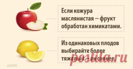 Как выбрать хорошие овощи ифрукты