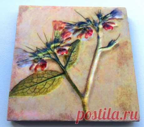 плитка керамическая гербарий, плитка керамическая цветы, плитка кера� | плитка ботаника | Постила