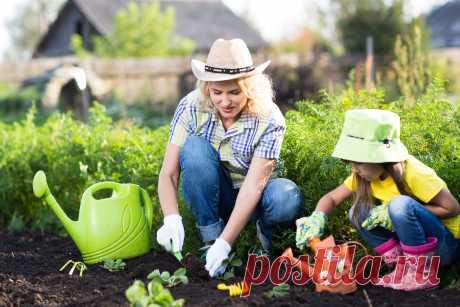 Приметы наших бабушек для сада и огорода в сентябре Selo.Guru — интернет портал о сельском хозяйстве