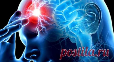 Настойка, которая поможет при сужении сосудов головного мозга - медиаплатформа МирТесен