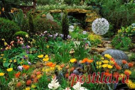 Как правильно подобрать цветы по их окраске - Мужской журнал JK Men's Растения с белыми цветками.Белый очень удобен: он отлично гармонирует со всеми цветами и оттенками, смягчает наиболее резкие тона, выделяя темные и приглушая яркие.