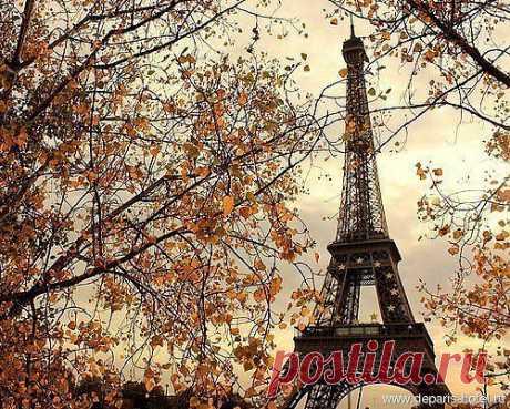 Опять в Париже листопад, Опять кружит над Сеной осень... Каштаны зрелые летят, И шепот пальм, и запах розы.