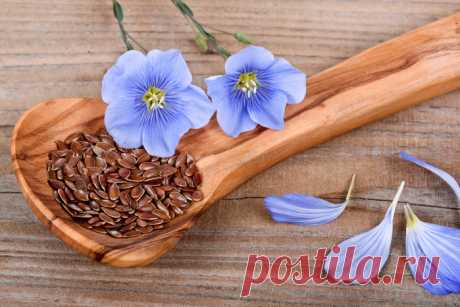 Чем полезны семена льна. Натюрморты