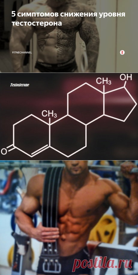 5 симптомов снижения уровня тестостерона | fitnechannel | Яндекс Дзен