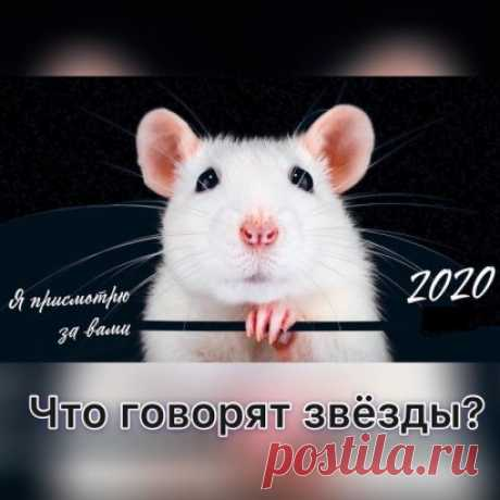 🏻 Прогноз на 2020 год  🏻