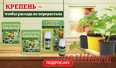 """На Огород.ru: Как отказаться от """"химии"""" на даче и при этом не потерять урожай - danute.marcinkiene@gmail.com - Gmail"""