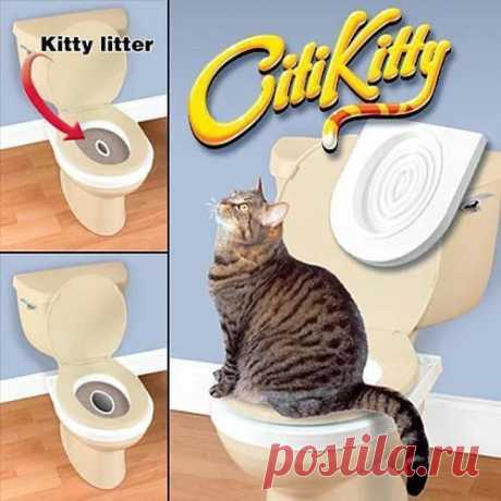 Купить тренажер для приучения кошек к унитазу citikitty (ситикитти) в магазине Нексер