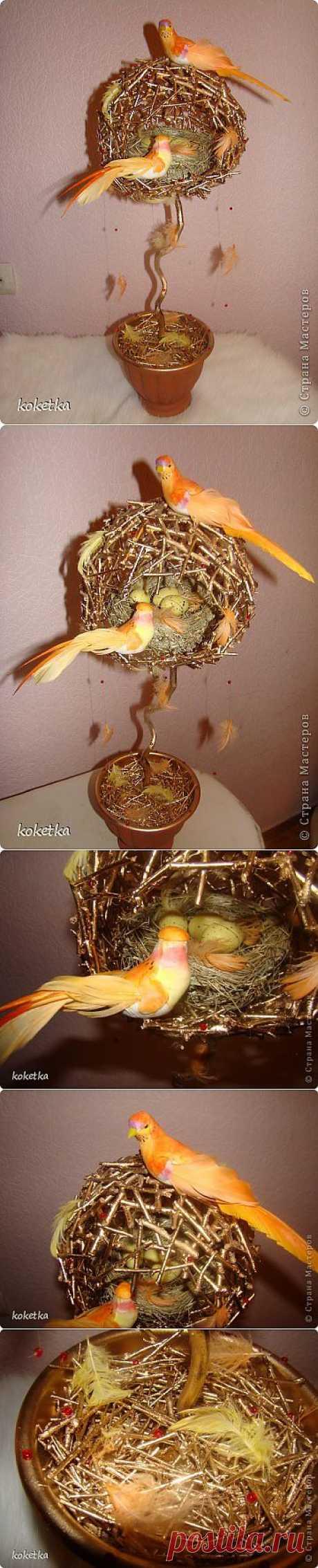 """Замечательные топиарии """"Птичьи гнезда"""" ."""