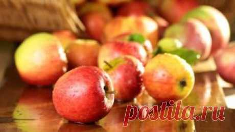 Какие яблоки самые лучшие? Рецептов с яблоками множество, и во многом успех блюд зависит от правильного выбора плодов. Какие яблоки лучше использовать в выпечку, из каких варить варенье и компоты, а какие засушить или пустить на сок?