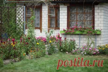 Как обустроить дворик :: оформление маленького дворика :: Дизайн дачи :: Сантехника