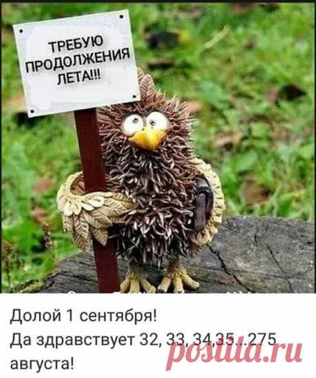 Долой Первое сентября!