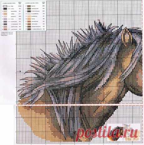 Вышивка крестиком. Лошади. (2)