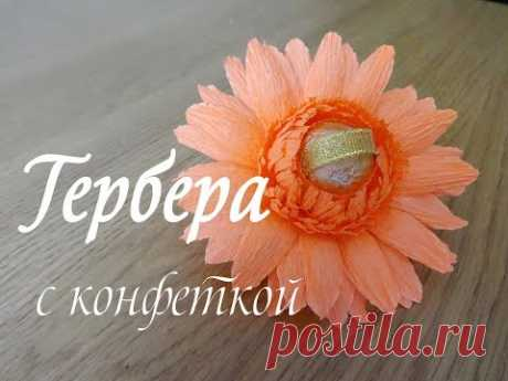 ГЕРБЕРА С КОНФЕТКОЙ